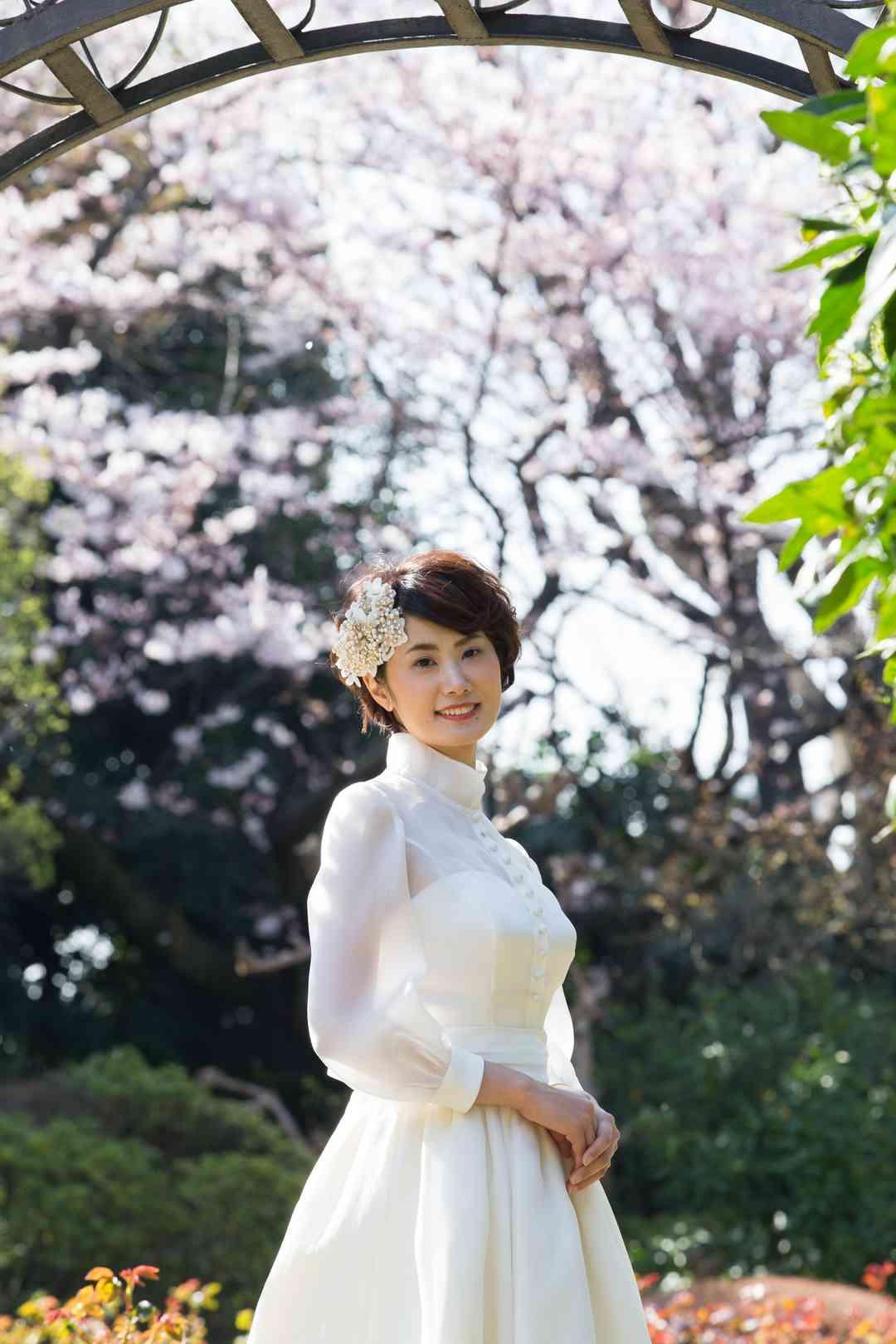 桜が彩る庭園