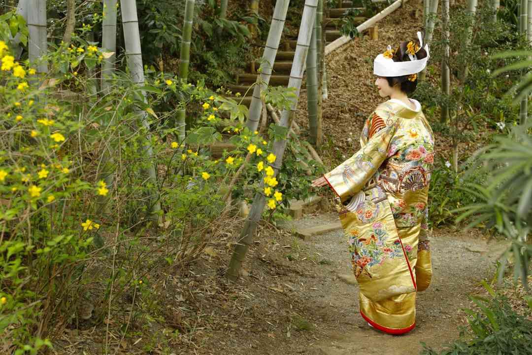 【金:相良刺繍】雲取花車