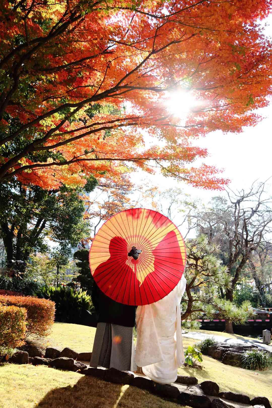 庭園ロケーション・秋の紅葉
