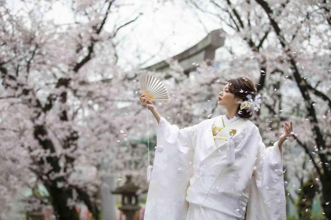 境内 桜撮影
